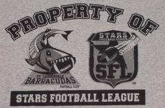 SFL Property Print.JPG